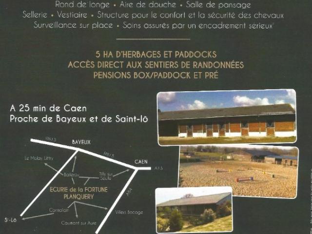 Pension de propriétaires de chevaux région Bayeux Saint Lô Caen en Normandie
